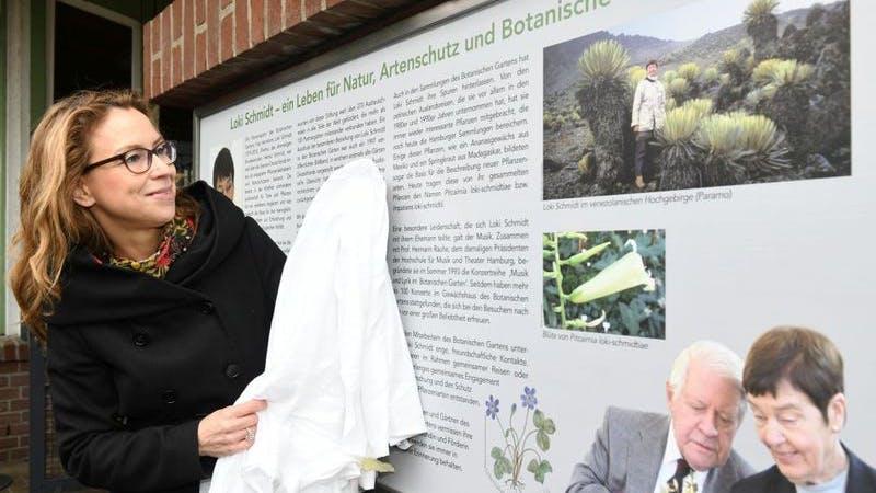 Loki Schmidt Gedenktafel. Auf dem Bild ist Bürgerschaftspräsidentin Carola Veit zu sehen, wie sie die neue Gedenktafel enthüllt