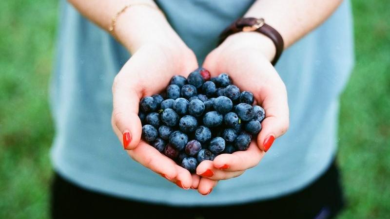 Obst, Blaubeeren