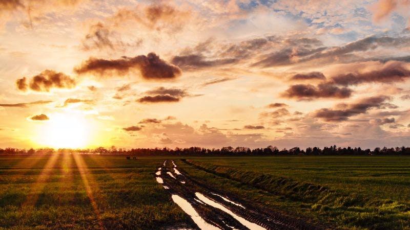 Sonnenaufgang vor Feld in Marschlanden
