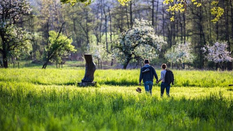 Barfußpfad, Natur