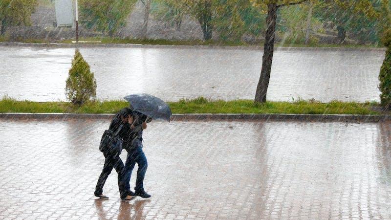 Regenschirm, Regen, Sturm, Herbst