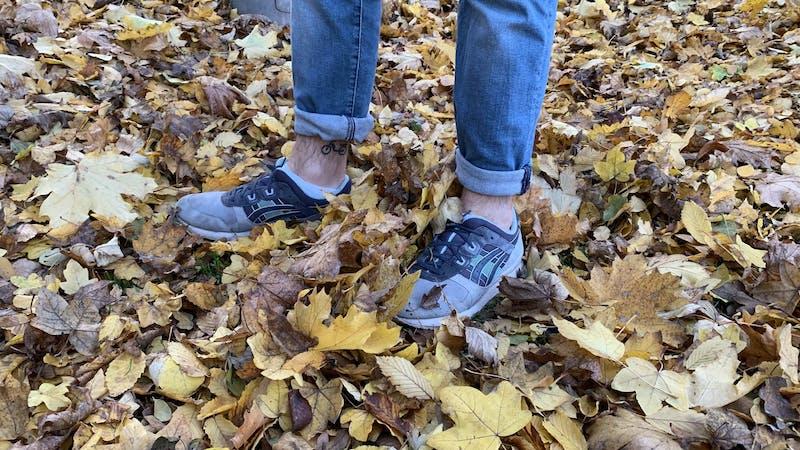 Herbst, Blätter