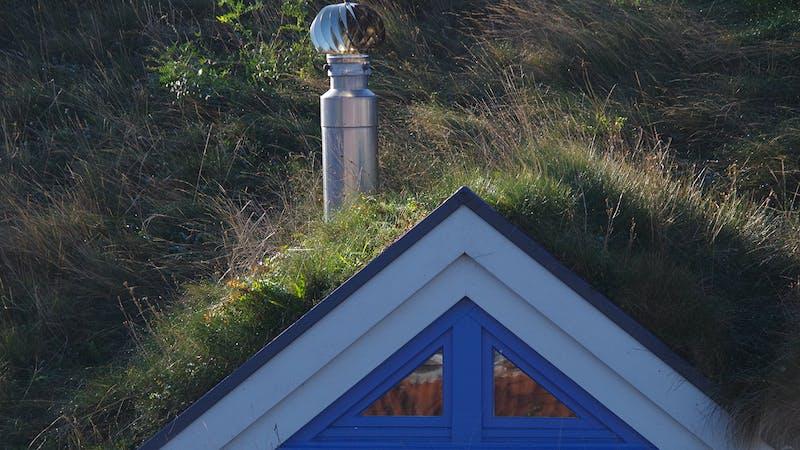 Ökologische Siedlung Allermöhe Grasdach