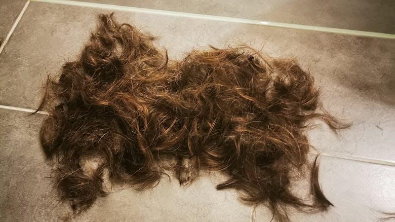 Haarhaufen