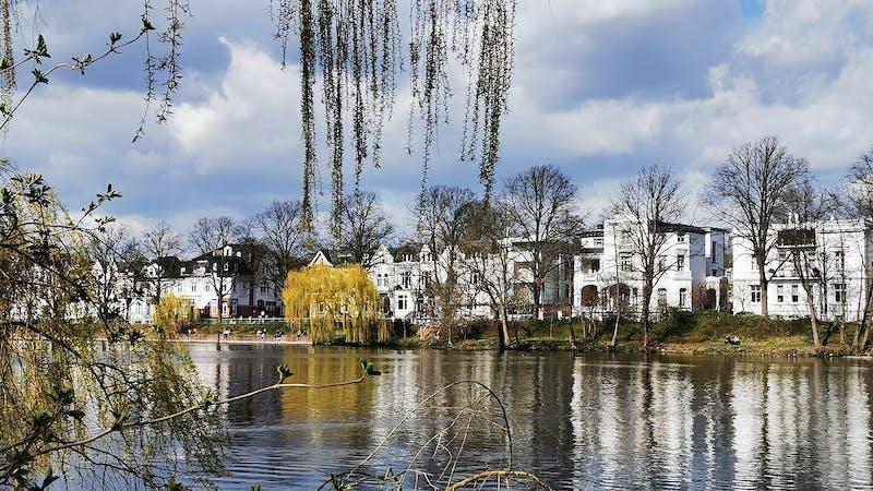Blick auf Villen am Alsterufer vom Eichenpark