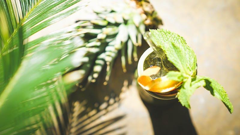 Drink im Botanic District