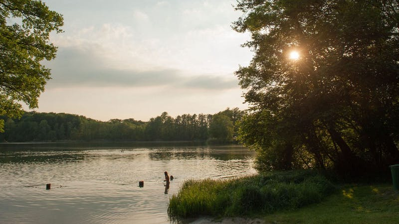 Sommer am Lankauer See